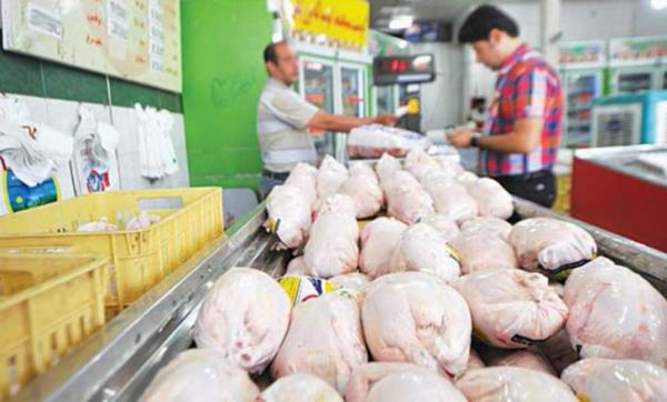 جهش ۱۵۰ تومانی نرخ مرغ در بازار / قیمت مرغ گرم به ۱۳ هزار و ۵۰۰ تومان رسید