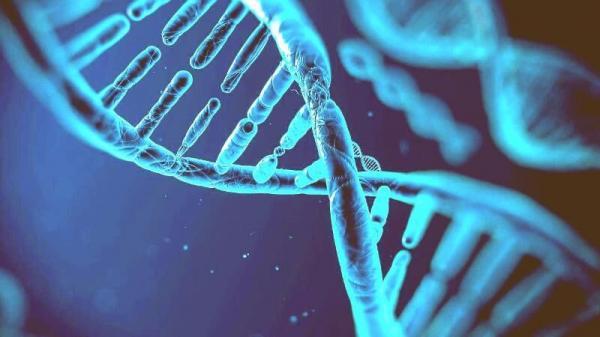 داروی ژندرمانی برای سرکوب تومور سرطان,اخبار پزشکی,خبرهای پزشکی,تازه های پزشکی