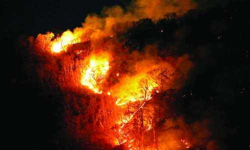 آتش سوزی در جنگل های آمازون,اخبار اجتماعی,خبرهای اجتماعی,محیط زیست