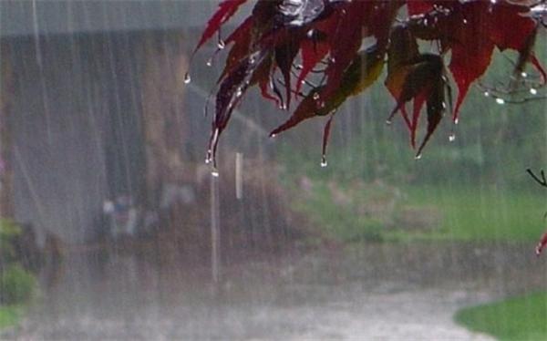 بارش باران در شمال,اخبار اجتماعی,خبرهای اجتماعی,وضعیت ترافیک و آب و هوا