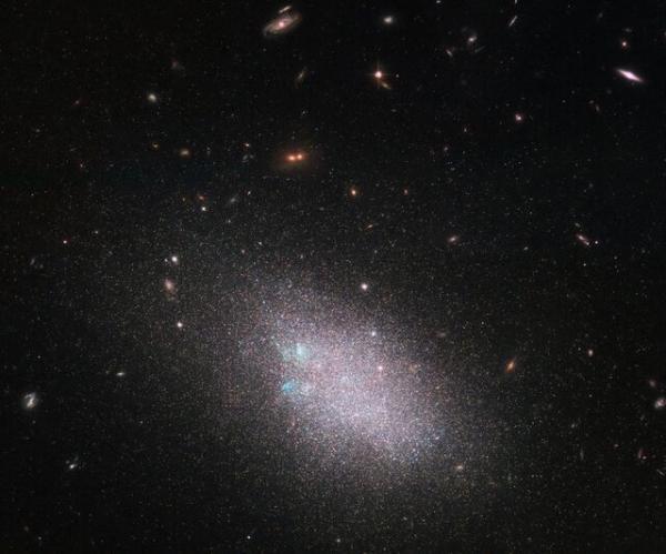 چندین کهکشان کوتوله و مارپیچی در یک قاب,اخبار علمی,خبرهای علمی,نجوم و فضا