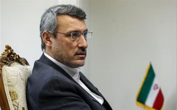 حمید بعیدی نژاد,اخبار سیاسی,خبرهای سیاسی,سیاست خارجی