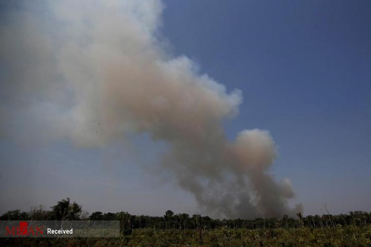 تصاویر آتش سوزی جنگلهای آمازون,عکس های آتش سوزی جنگلهای آمازون,تصاویر جنگلهای آمازون