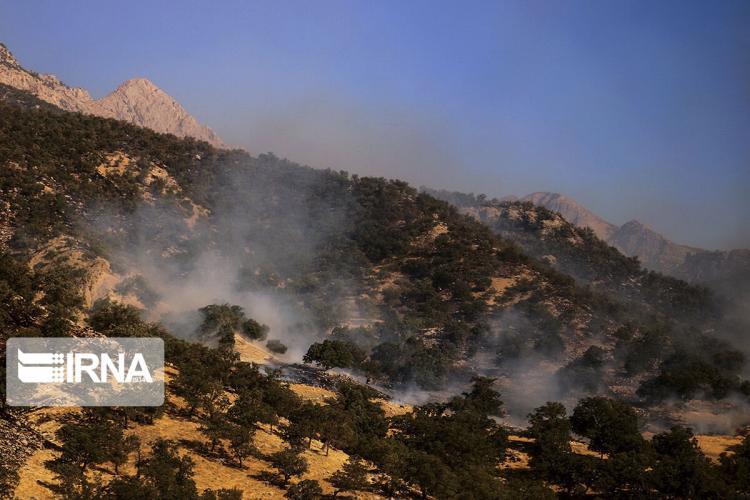 تصاویر آتش سوزی در جنگل نخودکار,عکس های آتش سوزی در جنگل نخودکار,تصاویر آتش سوزی در جنگل نخودکارشهرستان باغملک
