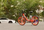 گسترش فرهنگ دوچرخهسواری در شهر,اخبار فرهنگی,خبرهای فرهنگی,رسانه