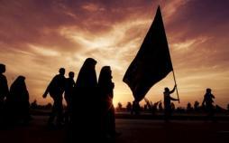 زائران اربعین,اخبار مذهبی,خبرهای مذهبی,حج و زیارت
