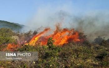 تصاویر آتشسوزی در جنگلهای ارسباران,عکس های آتشسوزی در جنگلهای ارسباران,تصاویرجنگلهای ارسباران