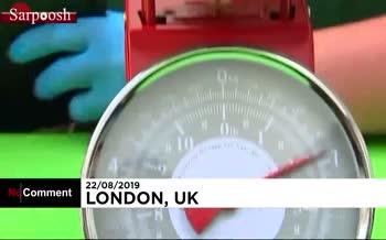فیلم/ حیوانات باغوحش لندن با روشهای تشویقی روی وزنه رفتند