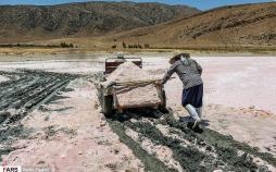 تصاویر برداشت نمک از دریاچه مهارلو,عکس های برداشت نمک از دریاچه مهارلو,تصاویر دریاچه مهارلو