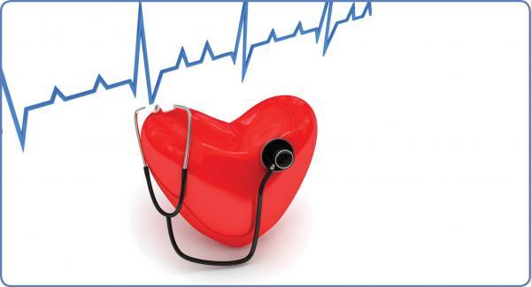 قلب انسان,اخبار پزشکی,خبرهای پزشکی,بهداشت