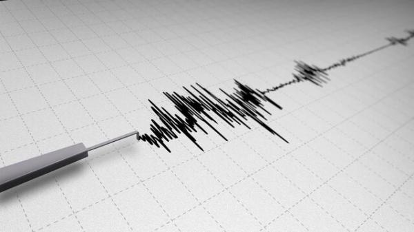 زلزله در پاکستان,اخبار حوادث,خبرهای حوادث,حوادث طبیعی