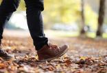 مضرات راه رفتن آرام برای سلامتی,اخبار پزشکی,خبرهای پزشکی,تازه های پزشکی