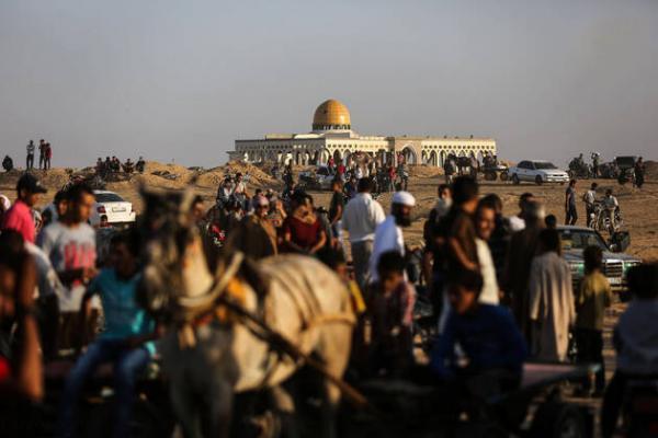 تصاویر مسابقات شترسواری در غزه,عکس های مسابقات شترسواری در غزه در فلسطین,عکس شترسواری در فلسطین