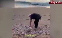 فیلم/ نخست وزیر هند در حال جمع آوری زباله از ساحل