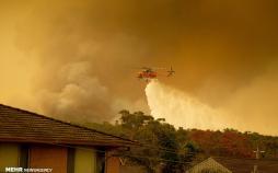 تصاویر آتش سوزی در استرالیا,عکس های آتش سوزی در استرالیا,تصاویر خسارات آتش سوزی در استرالیا