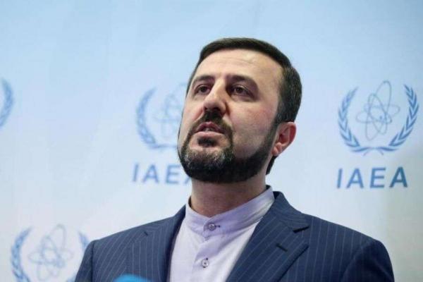 نماینده دائم ایران در آژانس,اخبار سیاسی,خبرهای سیاسی,سیاست خارجی
