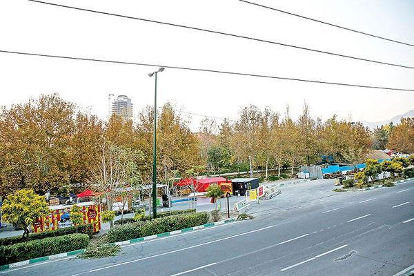 طرح زیستشبانه تهران,اخبار اجتماعی,خبرهای اجتماعی,شهر و روستا
