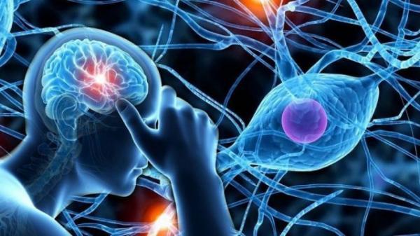 سکته مغزی,اخبار پزشکی,خبرهای پزشکی,بهداشت