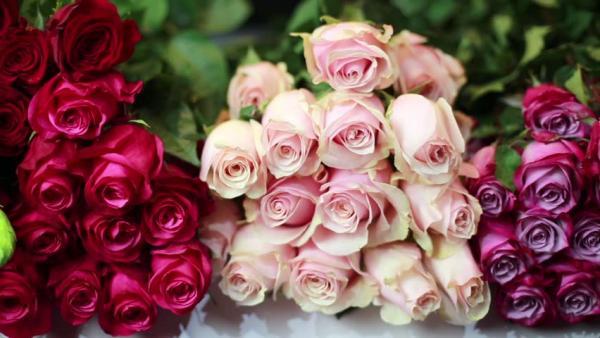 قیمت انواع گل در تهران,اخبار اقتصادی,خبرهای اقتصادی,کشت و دام و صنعت