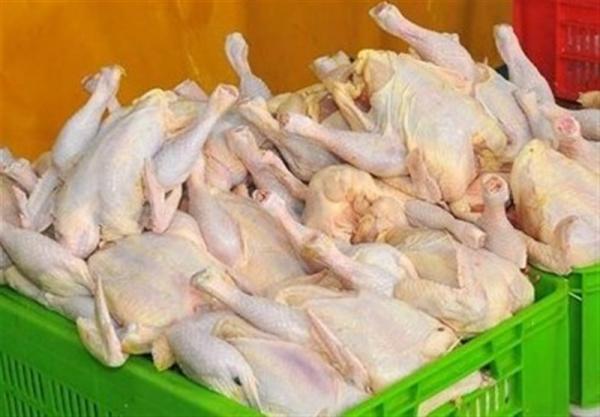 صدور مجوز واردات مرغ,اخبار اقتصادی,خبرهای اقتصادی,کشت و دام و صنعت