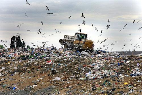 آلودگیِ مرکز دفن زبالهی کرج,اخبار پزشکی,خبرهای پزشکی,بهداشت