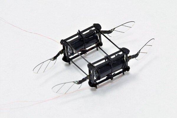 زنبور رباتیک با بال های نرم و منعطف,اخبار علمی,خبرهای علمی,اختراعات و پژوهش