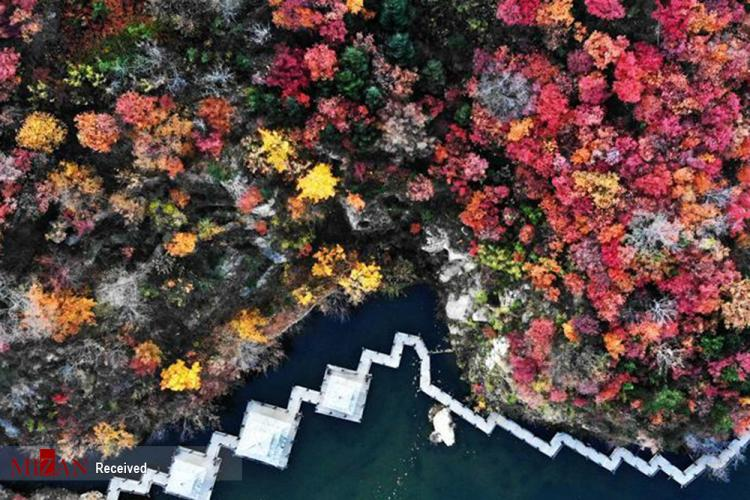 تصاویر زیباییهای فصل پاییز در چین,عکس های طبیعت چین,تصاویر فصل پاییز