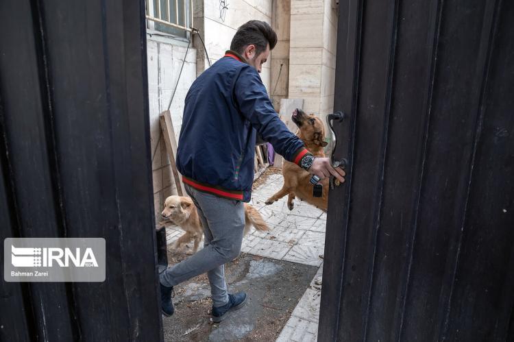 تصاویر زندگی مردی جوان با سگ معلول,عکس های زندگی مردی با سگ معلول,تصاویر سگ معلول