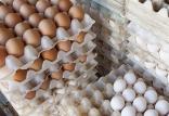 گرانفروشی تخم مرغ در بازار,اخبار اقتصادی,خبرهای اقتصادی,کشت و دام و صنعت