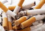 میزان مصرف سیگار در ایران,اخبار فرهنگی,خبرهای فرهنگی,کتاب و ادبیات