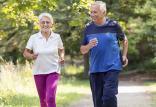 ورزش کردن افراد مسن,اخبار پزشکی,خبرهای پزشکی,تازه های پزشکی