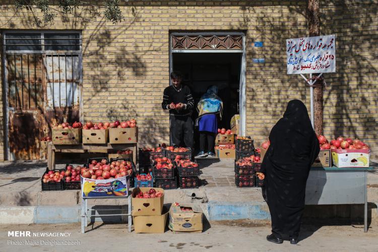 تصاویر نخستین جشنواره انار مهریز یزد,عکس های جشنواره در یزد,تصاویر جشنواره انار مهریز