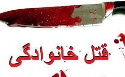 قتلهای خانوادگی,اخبار اجتماعی,خبرهای اجتماعی,آسیب های اجتماعی