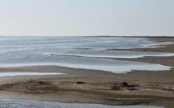 آب دریای خزر,اخبار اجتماعی,خبرهای اجتماعی,محیط زیست