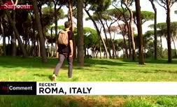 فیلم/ حکاکی هنرمند ایتالیایی بر روی درختان مُرده در رم