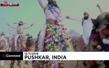 فیلم/ جشنواره شتر هند همراه با رقص و شادی