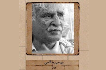 بهمن صالحی,اخبار فرهنگی,خبرهای فرهنگی,کتاب و ادبیات