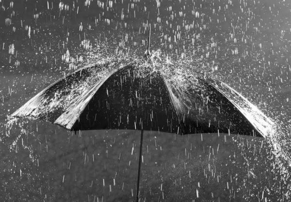 بارش برف و باران در نوار غربی,اخبار اجتماعی,خبرهای اجتماعی,وضعیت ترافیک و آب و هوا