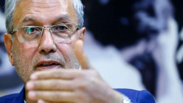 علی ربیعی,اخبار سیاسی,خبرهای سیاسی,دولت