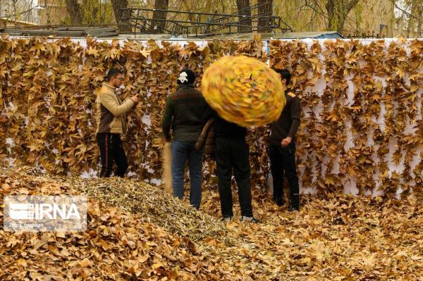 جشنواره پاییزی برگها و رنگها,اخبار هنرمندان,خبرهای هنرمندان,جشنواره