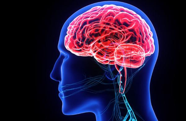 سطوح اکسیژن مغز جوانان,اخبار پزشکی,خبرهای پزشکی,تازه های پزشکی