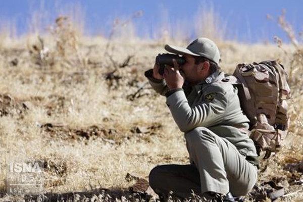 زخمی شدن دو محیط بان در چهارمحال و بختیاری به ضرب گلوله شکارچیان