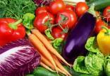 محصولات زراعی و باغی,اخبار اقتصادی,خبرهای اقتصادی,کشت و دام و صنعت