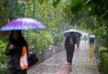 بارش باران در تهران,اخبار اجتماعی,خبرهای اجتماعی,وضعیت ترافیک و آب و هوا