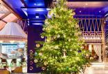 درخت کریسمس,اخبار جالب,خبرهای جالب,خواندنی ها و دیدنی ها