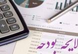 افزایش بودجه شرکتهای دولتی,اخبار اقتصادی,خبرهای اقتصادی,اقتصاد کلان