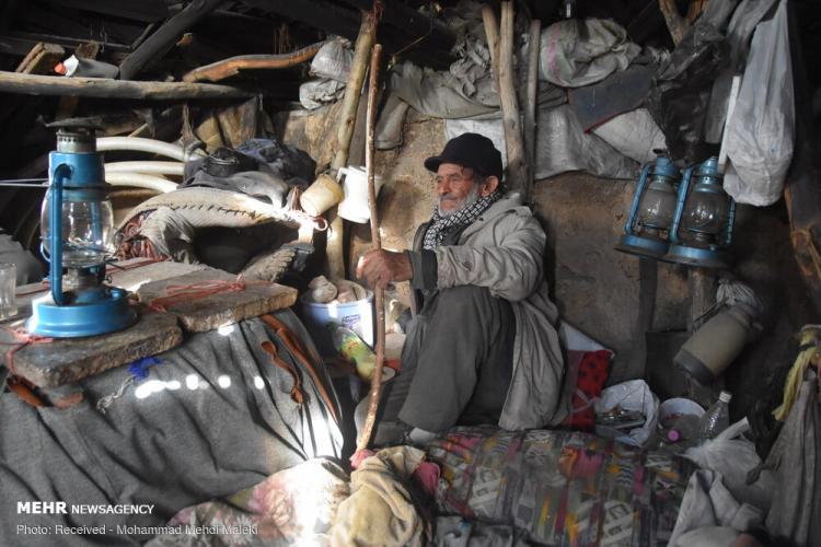 تصاویر زندگی پیرمرد چوپان در تپه های دشت,عکس های زندگی پیرمرد چوپان در تپه های دشت,تصاویر حسینعلی شبانپور