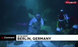 فیلم/ بابانوئلها در آکواریوم برلین