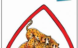 کاریکاتور مرگ پلنگ ها,کاریکاتور,عکس کاریکاتور,کاریکاتور اجتماعی