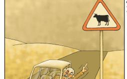 کاریکاتور تخلفات رانندگی,کاریکاتور,عکس کاریکاتور,کاریکاتور اجتماعی